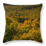 Summit Peak Autumn 10 Throw Pillow
