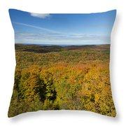 Summit Peak Autumn 11 Throw Pillow