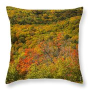 Summit Peak Autumn 6 Throw Pillow