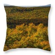 Summit Peak Autumn 9 Throw Pillow