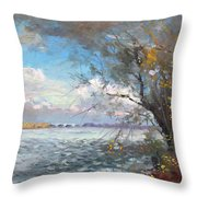 Sun After Storm Throw Pillow by Ylli Haruni