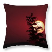 Sun And The Flower  Throw Pillow