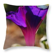 Sun Bathing In Shades Of Purple Throw Pillow