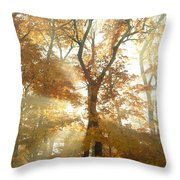 Sun Breaking Through Trees Throw Pillow