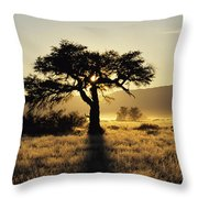 Sun Coming Up Behind A Tree In African Throw Pillow