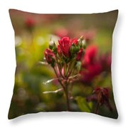 Sun In The Garden Throw Pillow