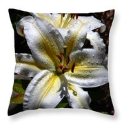Sun Kissed Lily Throw Pillow