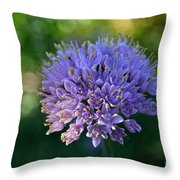 Sun Kissed Morning Throw Pillow