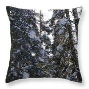 Sun Rays On Snowy Trees Throw Pillow