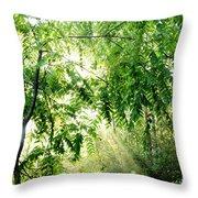 Sun Rays Through Black Walnut Leaves Throw Pillow