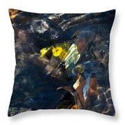 Sun Water Leaves And Mud Throw Pillow