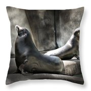 Sunbathing Seals Throw Pillow