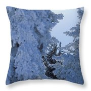 Sunburst In Yellowstone Throw Pillow