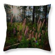 Sunburst On Elegant Liatris Throw Pillow