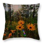 Sunburst On Sunflowers Throw Pillow