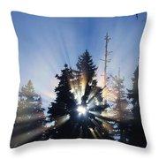 Sunburst Through Silhouetted Pine Trees Throw Pillow