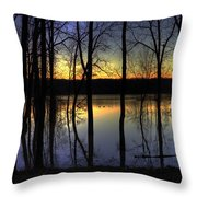 Sundown Mallards Throw Pillow