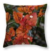 Sundown Orange Throw Pillow
