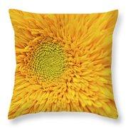 Sunflower 2881 Throw Pillow