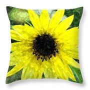 Sunflower 5 Sf5wc Throw Pillow