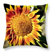 Sunflower And Bud Throw Pillow