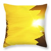 Sunflower And Sunset Throw Pillow