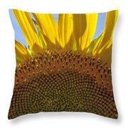 Sunflower Arch Throw Pillow