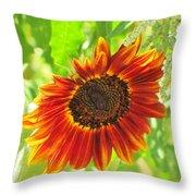 Sunflower Beauty Throw Pillow