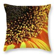 Sunflower Edge Throw Pillow