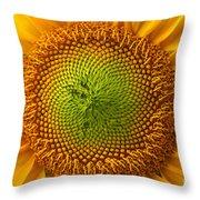 Sunflower Fantasy Throw Pillow