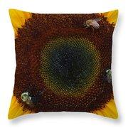 Sunflower Gathering Throw Pillow