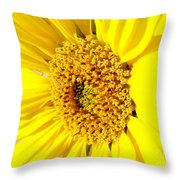 Sunflower Joy Throw Pillow