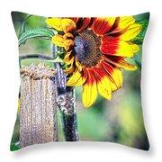 Sunflower On A Stick Throw Pillow