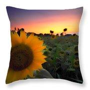 Sunflower Smoothie Throw Pillow