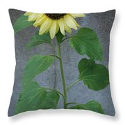 Sunflower Stalk  Throw Pillow