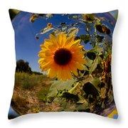 Sunflower Through A Glass Eye Throw Pillow