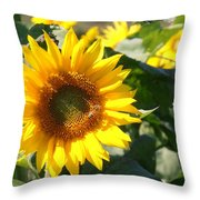 Sunflower Visitor Throw Pillow