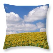 Sunflowers, Austin, Manitoba Throw Pillow