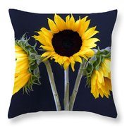 Sunflowers Three Throw Pillow