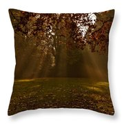 Sunlight And Leaves Throw Pillow