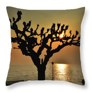 Sunlight And Tree Throw Pillow
