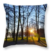 Sunlight Between The Trees Throw Pillow