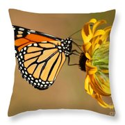 Sunlight Colors Throw Pillow