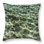 Sunlight Creates Reflective Patterns Throw Pillow