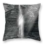 Sunlight Falls Throw Pillow