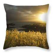Sunlight Glowing At Sunset And Throw Pillow