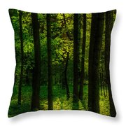 Sunlight In Forest Throw Pillow