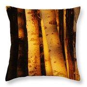 Sunlight On Aspen Trees, Twin Falls Throw Pillow