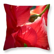 Sunlight On Red Hibiscus Throw Pillow