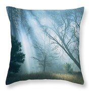 Sunlight Pierces The Morning Mist Throw Pillow